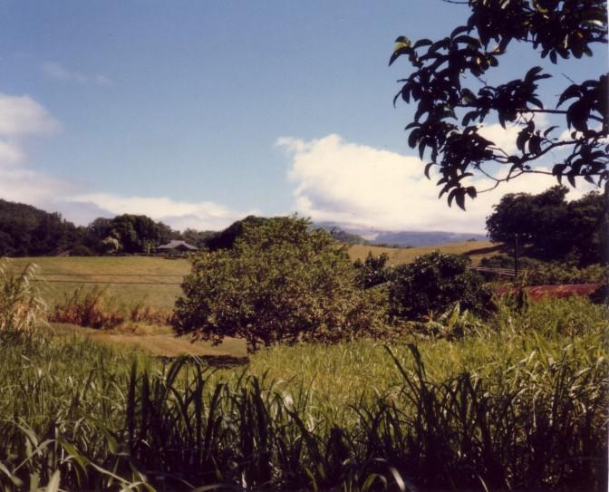 Kokomo, Maui (1986)